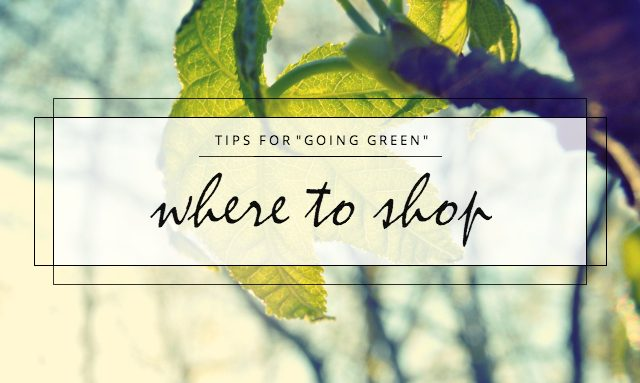goinggreenwheretoshop-2199174